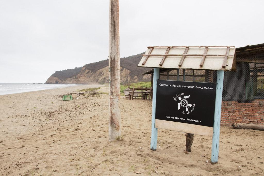 Equateur Coeur de voyageurs Puerto Lopez centre de réhabilitation faune marine