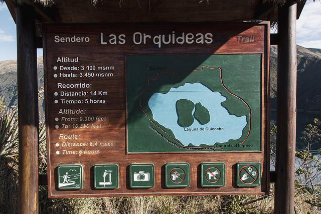 Sentier des orchidées, laguna Cuicocha