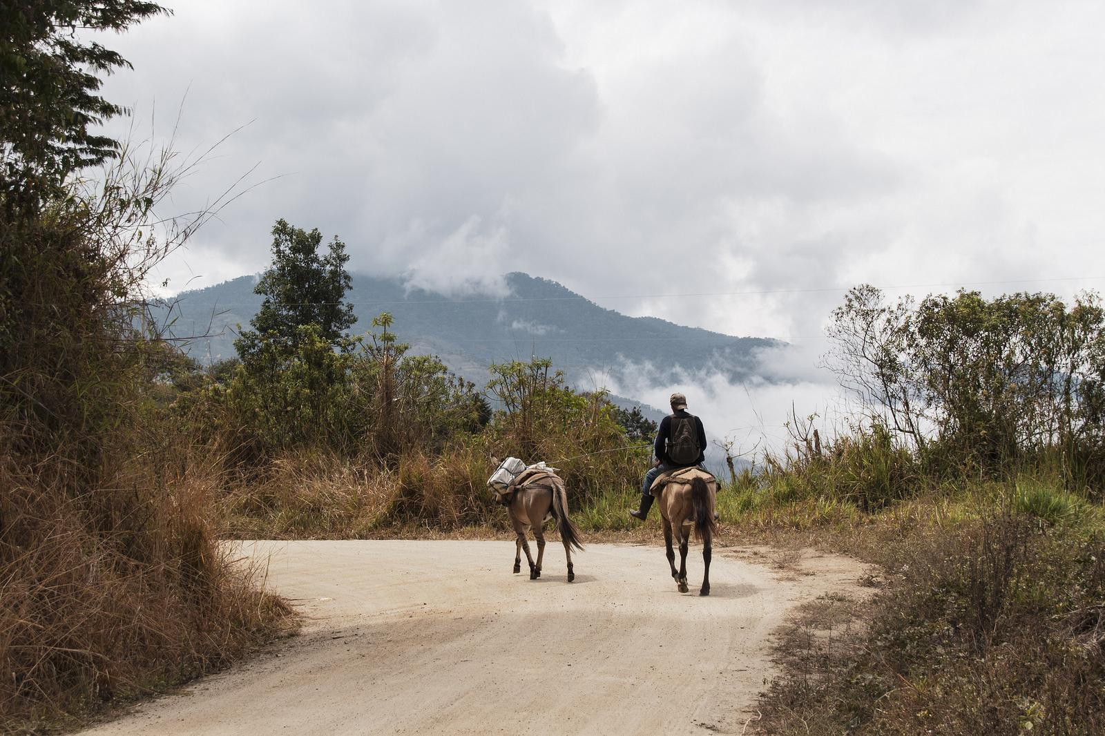 Cotacachi & Vallée de l'Intag