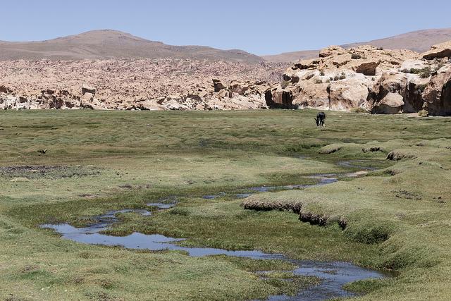 Sud Lipez Bolivie Coeur de Voyageurs 2