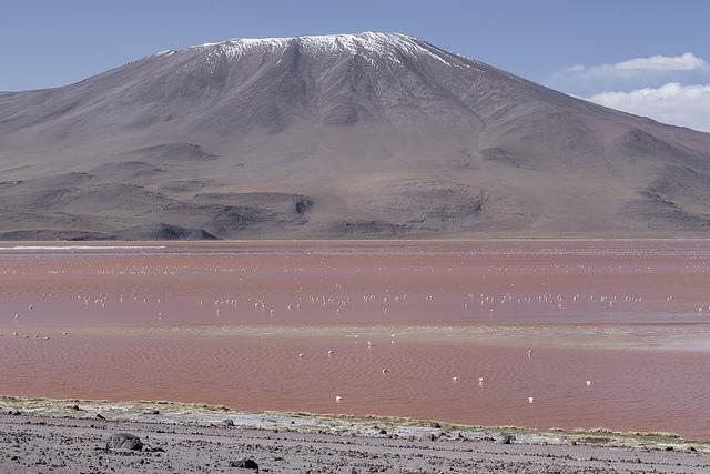 Sud Lipez Bolivie Coeur de Voyageurs 4