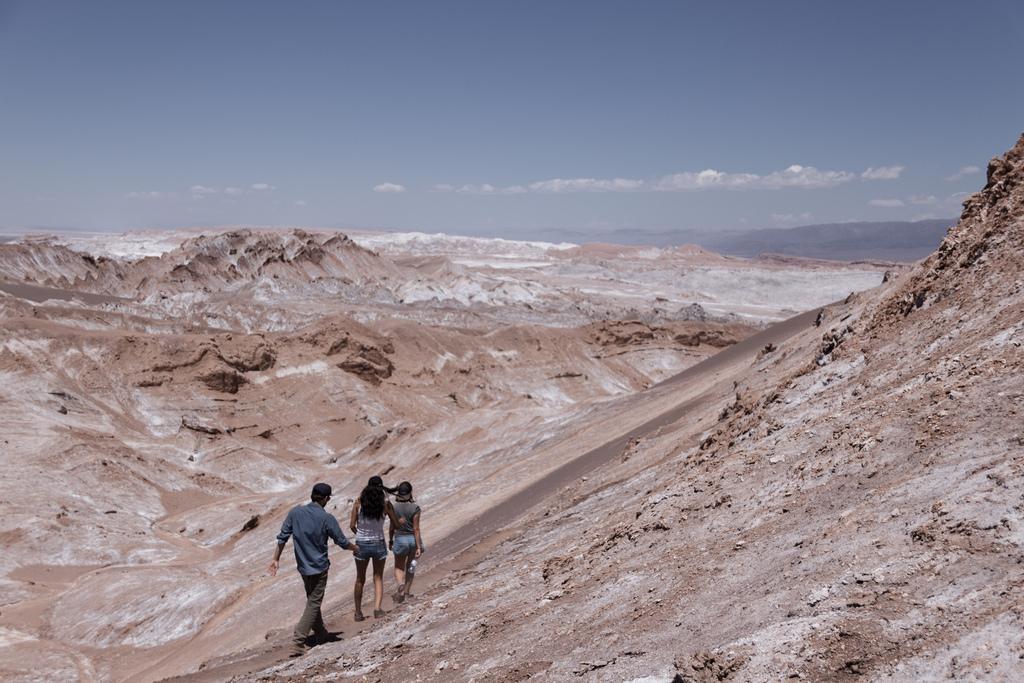 Des retrouvailles dans le désert d'Atacama
