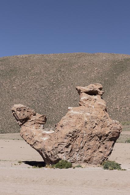 Sud Lipez Bolivie Coeur de Voyageurs 15