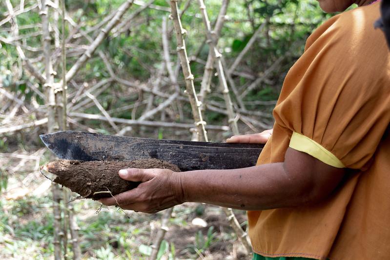 Amazonie Cuyabeno Equateur Coeur de Voyageurs 11