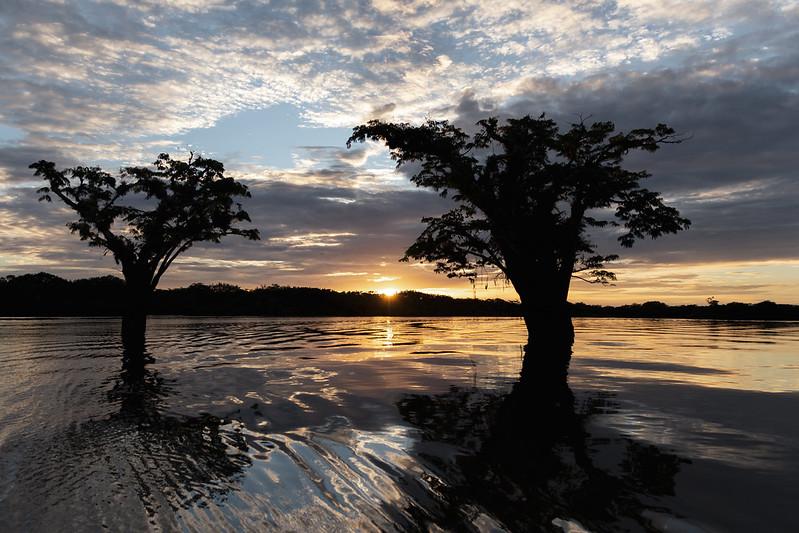 Amazonie Cuyabeno Equateur Coeur de Voyageurs 12