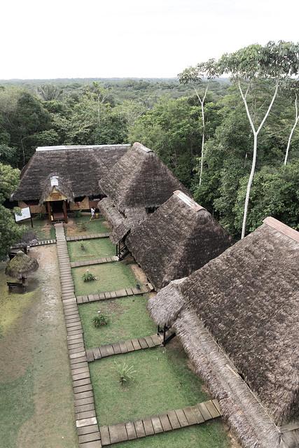 Amazonie Cuyabeno Equateur Coeur de Voyageurs 25