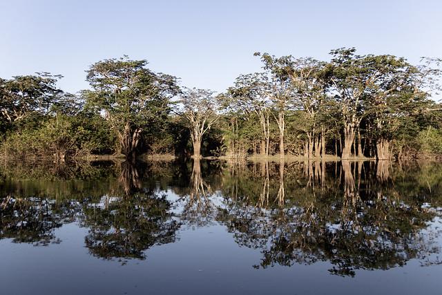 Amazonie Cuyabeno Equateur Coeur de Voyageurs 23