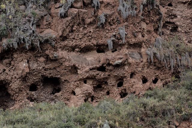 Vallée Sacrée Pisac Perou Coeur de Voyageurs 1