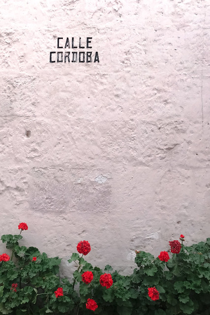 Arequipa Perou Coeur de Voyageurs 6